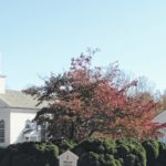 Community Thanksgiving service to be held