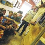 A day at the barn for Boonville students
