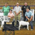 Youth show livestock in annual event