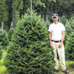 NC Christmas trees: grown by hand, protected by science