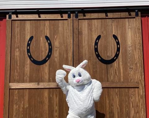 The Easter Bunny will make an appearance at Saturday's EGGstravaganza at HDK Ranch in Jonesville.
